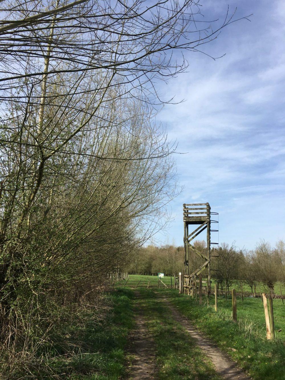 uitkijktoren in natuurgebied Aronsthoek